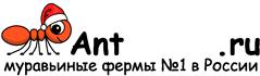 Муравьиные фермы AntFarms.ru - Симферополь